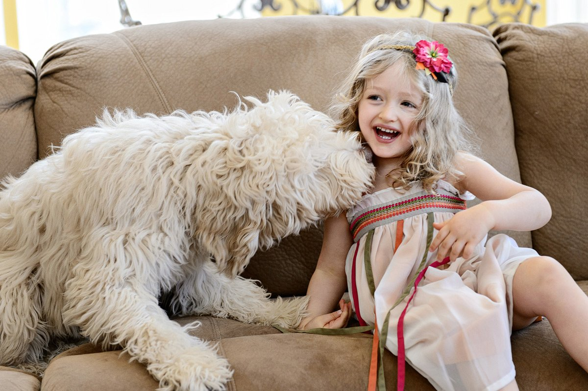 toddler with her dog in family photos frisco tx